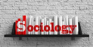 B A Sociology