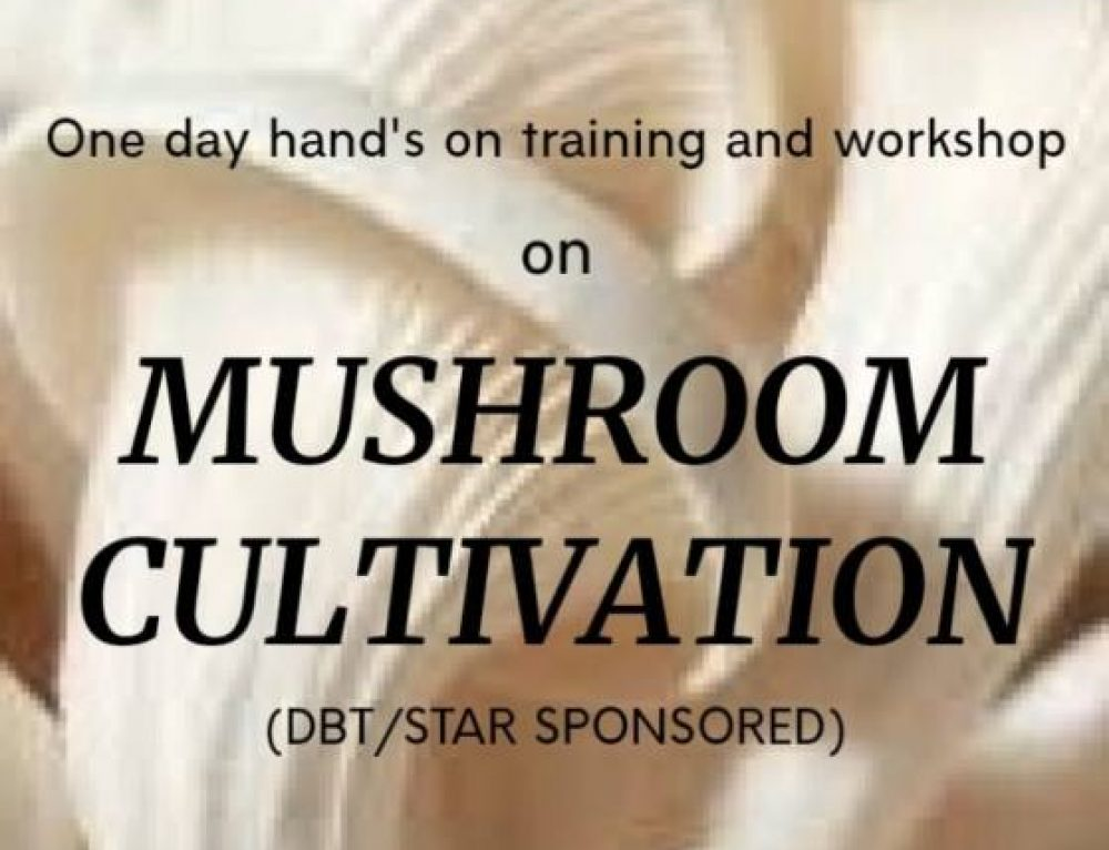 Hand's on Training and Workshop on 'Mushroom Cultivation'