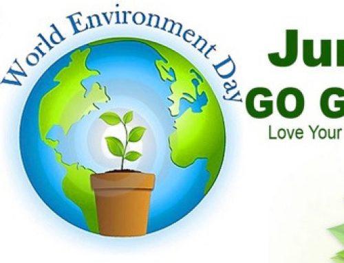 World Environment Day Challenge